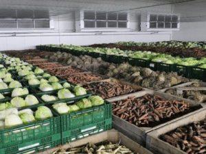 Овощи фрукты дольше сохранить