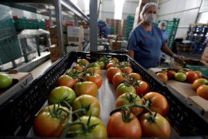 Увеличить сроки хранения овощей и фруктов