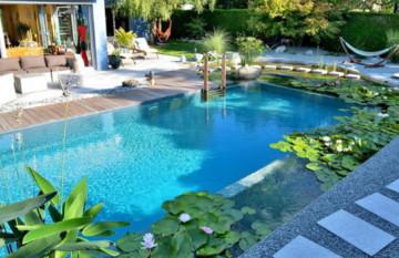 Озон для бассейнов