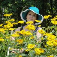Діана, дезинфекція запахів у Кропивницькому